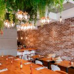 Plants and vibrant lighting over communal table at Monki Bistro in Inglewood